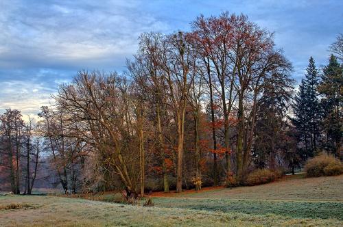 Park gołuchowski