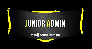 Junior Admin