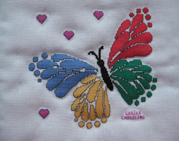 225.Motyl na poduszkę