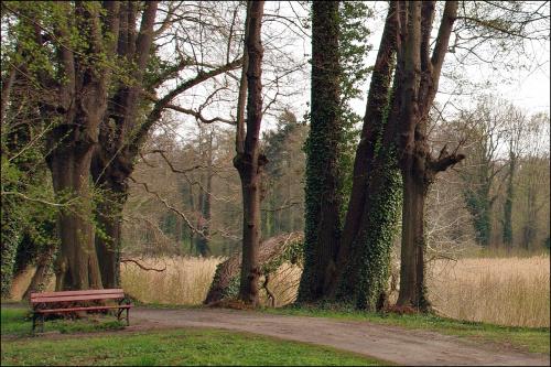 Brody - park pałacowy (przed sezonem)