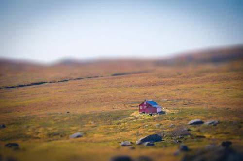 Jest taki samotny dom...