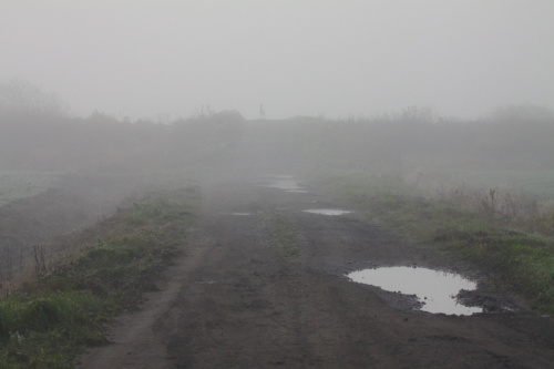 Z porannej mgły