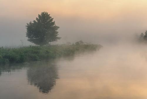 Osnute mgłą