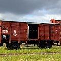 Model wagonu towarowego P.K.P. Skalia 1:87 H0. Epoka II. Konwersja rocketman. #PKP #wagon #towarowy H0