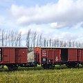 Wagony towarowe P.K.P. w skali 1:87 H0. Epoka II #PKP #wagon #towarowy