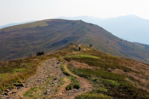 W drodze na drugi szczyt Połoniny Caryńskiej