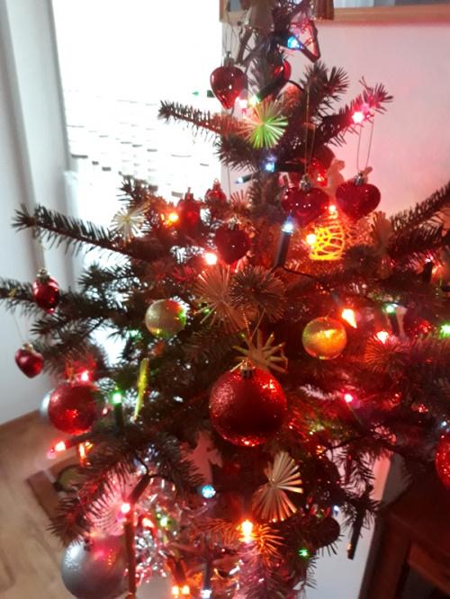 Choinka na Boże Narodzenie 2020