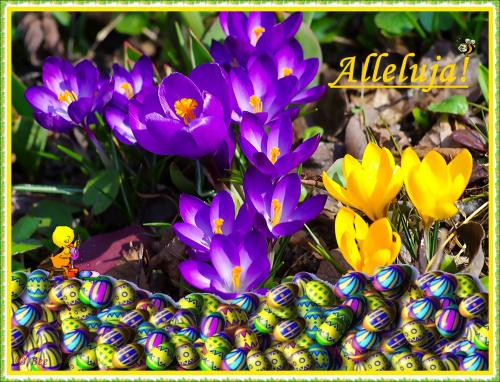 Radosnych Świąt Wielkanocnych! Wypełnionych nadzieją budzącej się do życia wiosny, wiarą w sens życia, pogodą w sercu i radością płynącej z faktu Zmartwychwstania Pańskiego.