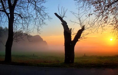 W tęczowej mgle
