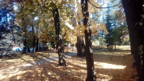 Park Bobrowskich - Andrychów